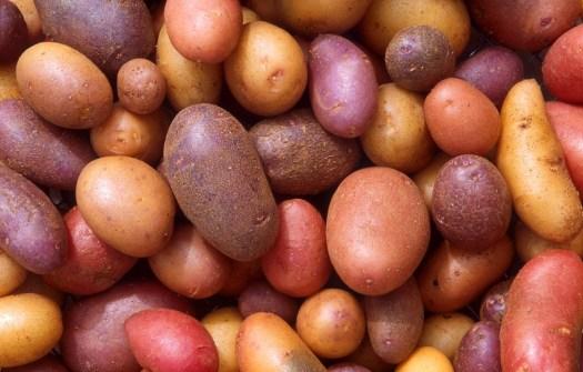 Potato & Herb Salad