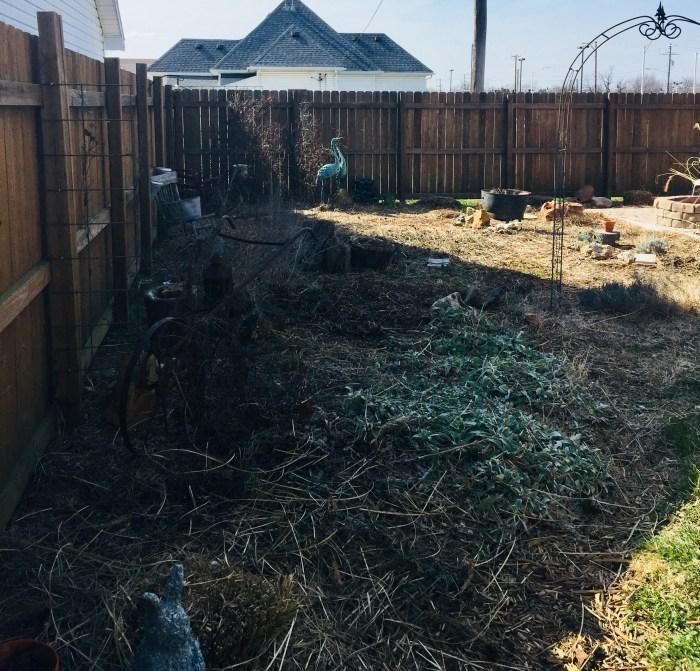 Wakey Wakey A Gardening Story