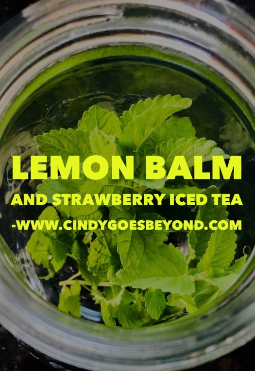 Lemon Balm and Strawberry Iced Tea