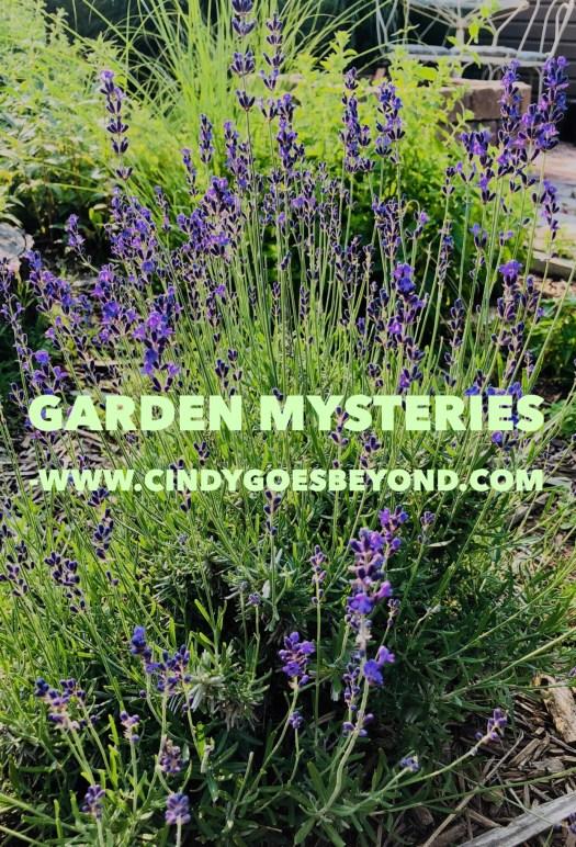 Garden Mysteries