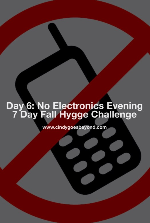 Day 6 No Electronics Evening