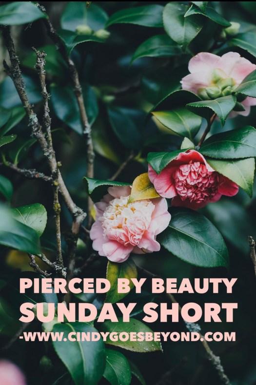 Pierced by Beauty