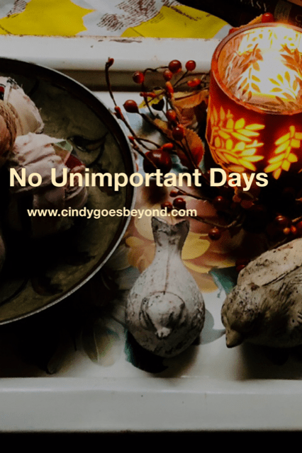 No Unimportant Days