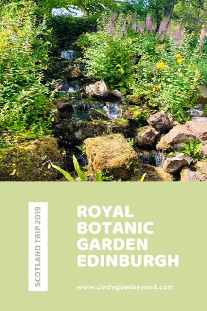 Royal Botanic Garden title meme