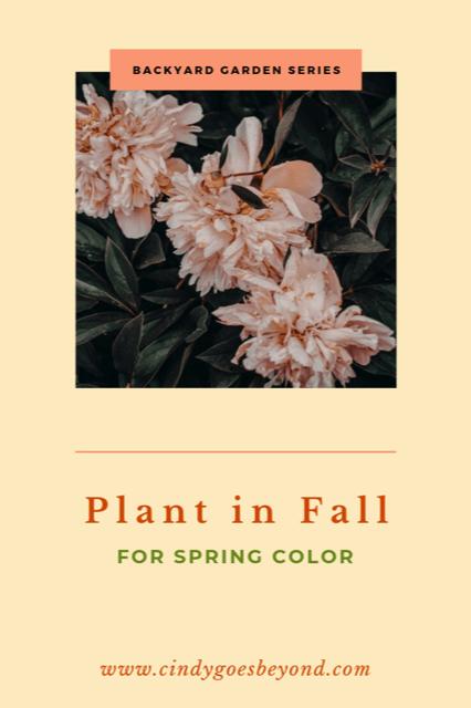 Plant in Fall title meme