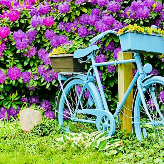 Create a a Meditation Area in Your Garden bicycle
