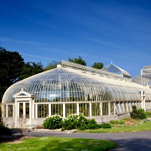 Non Touristy Places to Visit in Dublin Botanic Garden