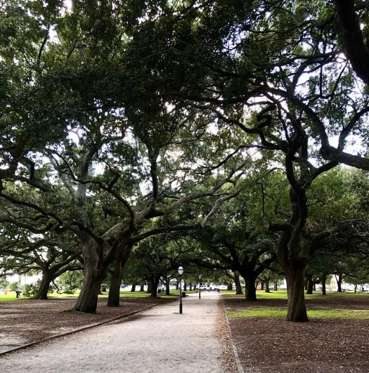 Ghost Stories from Charleston white point garden