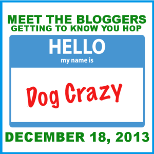 """Meet the Bloggers"" Bloghop – Join the Party!"