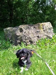 CindyLusMuse big rock near creek