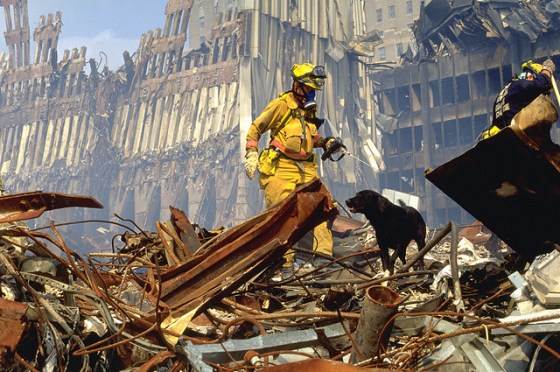 New York, NY, September 21, 2001 -- FEMA's Urban Search and Rescue teams search for survivors amongst the wreckage of the World Trade Center. Photo by Andrea Booher/ FEMA News Photo
