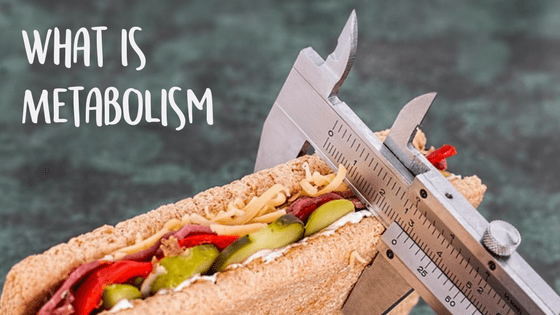 What is Metabolism & Lemon Roasted Herbed Chicken Recipe