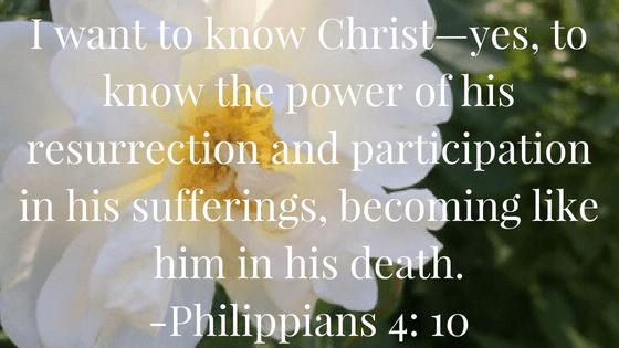 Philippians 4, 10.png