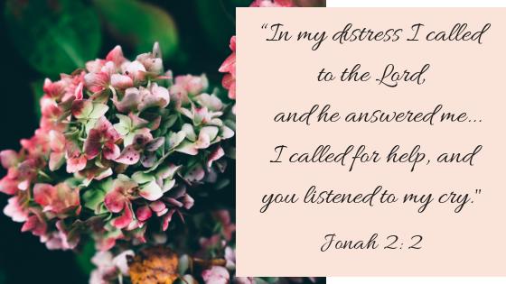 Jonah 2, 2.png