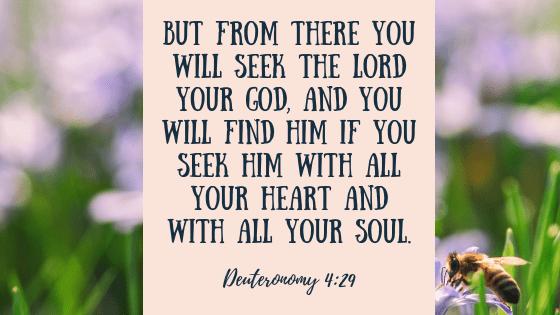Deuteronomy 4, 29.png