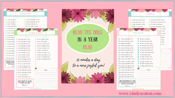 Free printable for reading the Bible in a year.