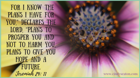 Picture of purple flower with bible verse over top Jeremiah 29:11.