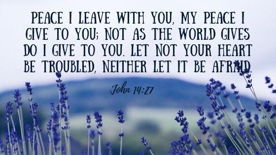 Bible verse John 14:7.