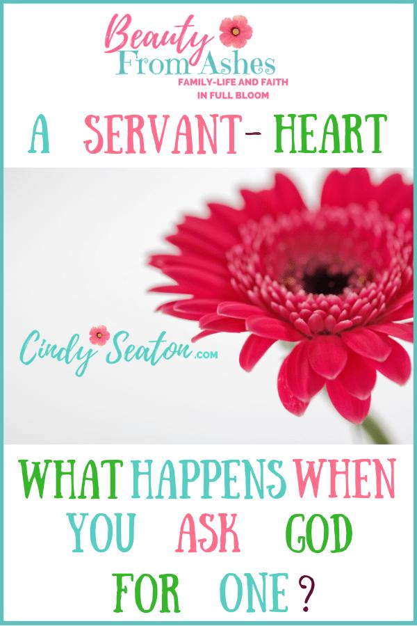 A servant's heart photo for Pinterest.