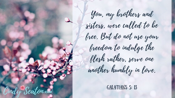 Bible verse Galatians 5: 13 about having a servant's  heart