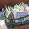 seed packs in basket