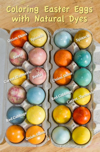 Easter egg color chart