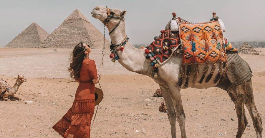 Camel at the Great Pyramids of Giza, Egypt - Egypt travel guide and itinerary by cindyycheeks