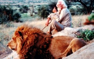 DVD Review: 'To Walk with Lions'