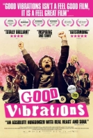 Film Review: 'Good Vibrations'