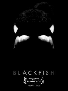 Sundance London 2013: 'Blackfish' review