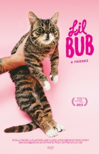 Under the Radar: 'Lil Bub & Friendz' review