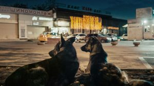 Film Review: Space Dogs