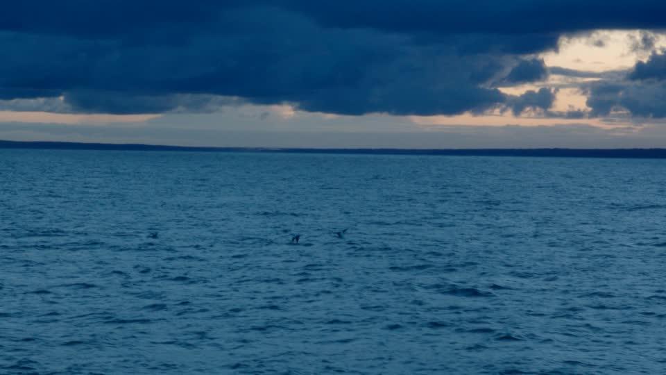Crimen y misterio en el mar