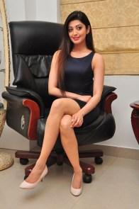 Pranitha suhash photoshoot 11
