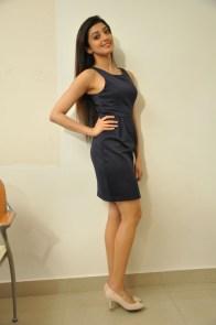 Pranitha suhash photoshoot 12