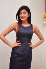 Pranitha suhash photoshoot 7
