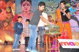 Bhale Bhale Manchi Roju Audio Launch 21