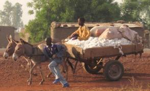 cinecicleta-Burkina-Fasso (25)