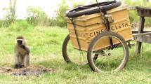 cinecicleta-kenia-II (1)