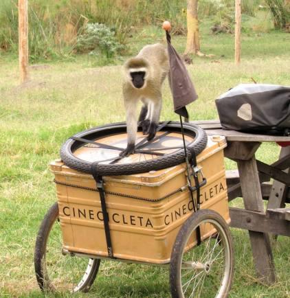 cinecicleta-kenia-II (2)