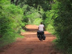 Guinea-Bissau (13)