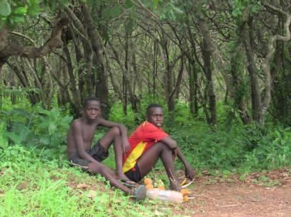 Guinea-Bissau (19)