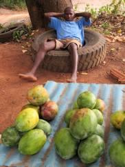 Guinea-Bissau (22)
