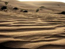 mauritania (17)