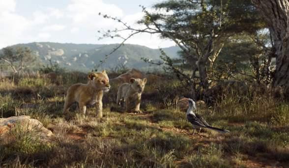 Simba, Nala et Zazu