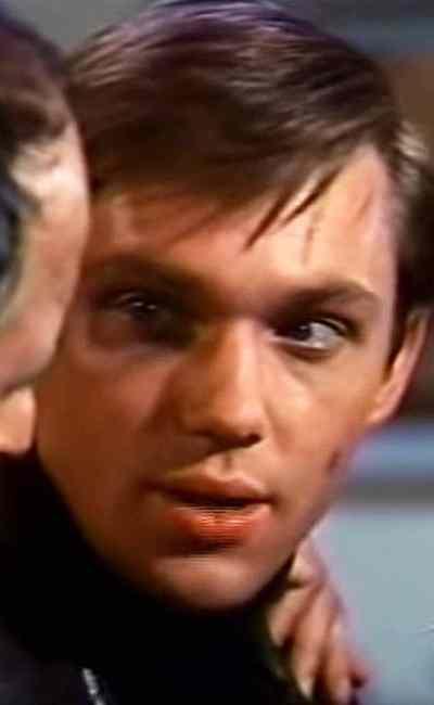 Robert Wightman débute dans Getting Married (1978) de Steven Hilliard Stern