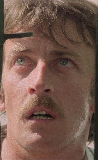 Lewis Fiander dans Les révoltés de l'an 2000