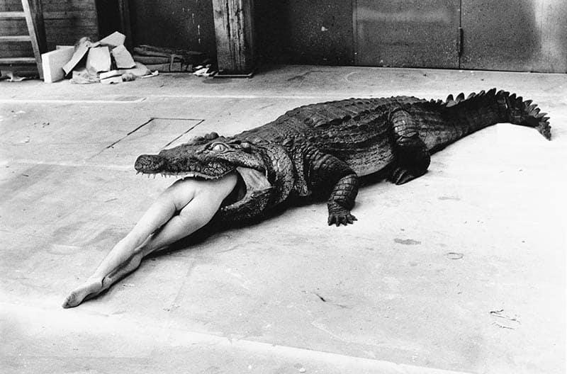 Le cliché choc du crocodile dévorant Wuppertal, d'Helmut Newton