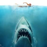 Le requin qui valait 470 millions de dollars !