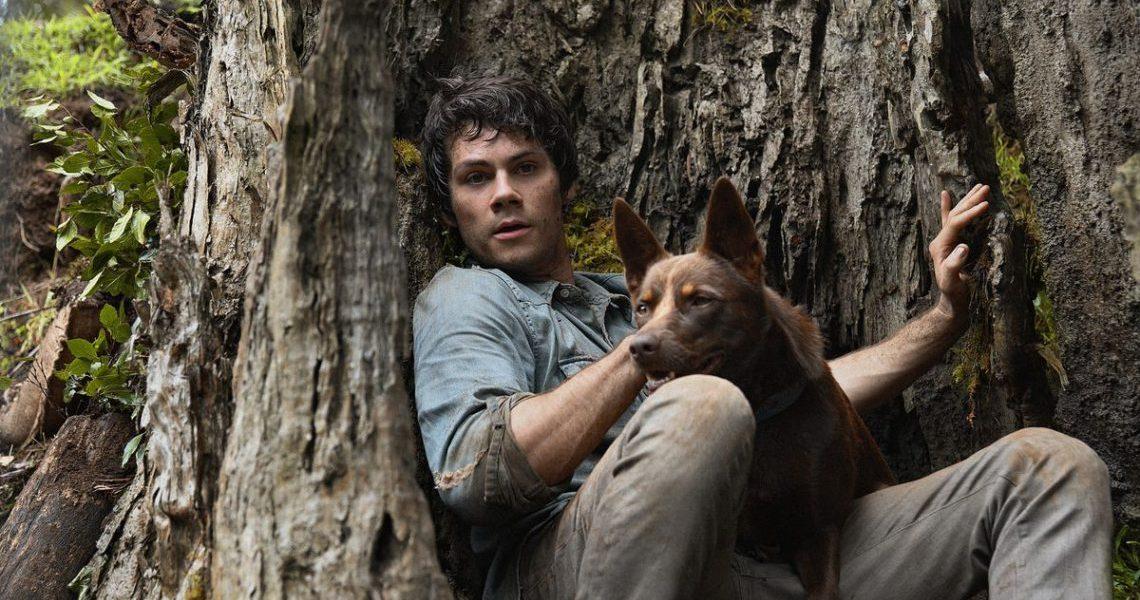 Crítica: Amor e Monstros (Netflix) - Dylan O'Brien como Joel e o cachorro